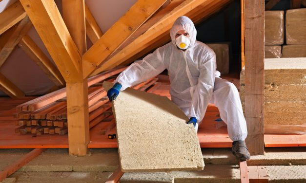 Insulation And Pests: What's The Attraction?
